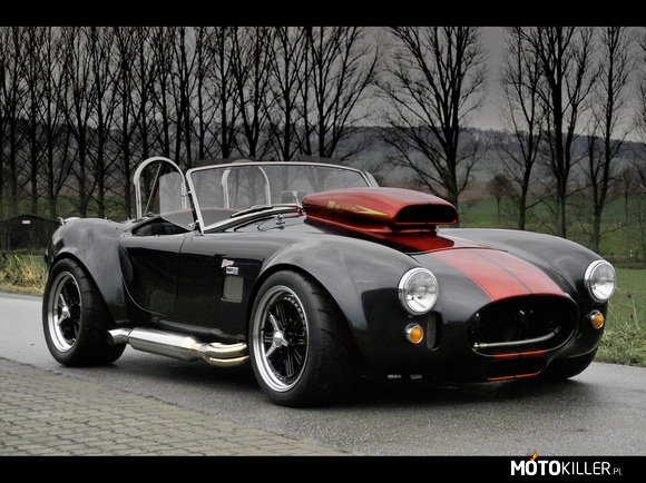 Weineck cobra 780 cui limited edition –