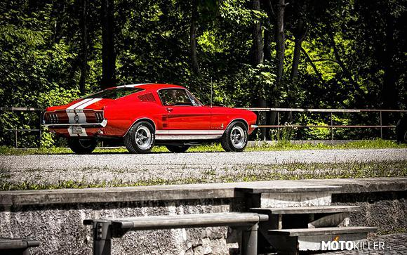 Ford Mustang Fastback S-Code –