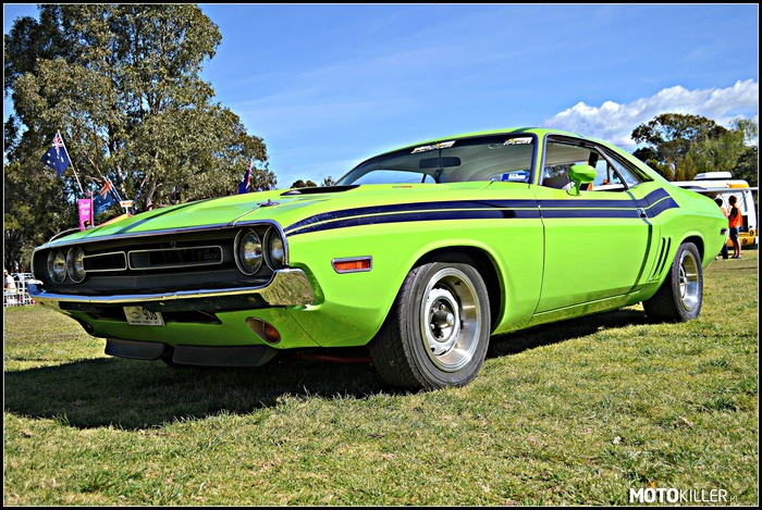 Mean Green Chally 440 Magnum –