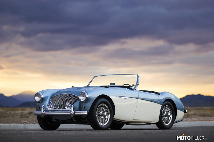 Austin-Healey 100M 'Factory' Le Mans BN2 Roadster 1956 –