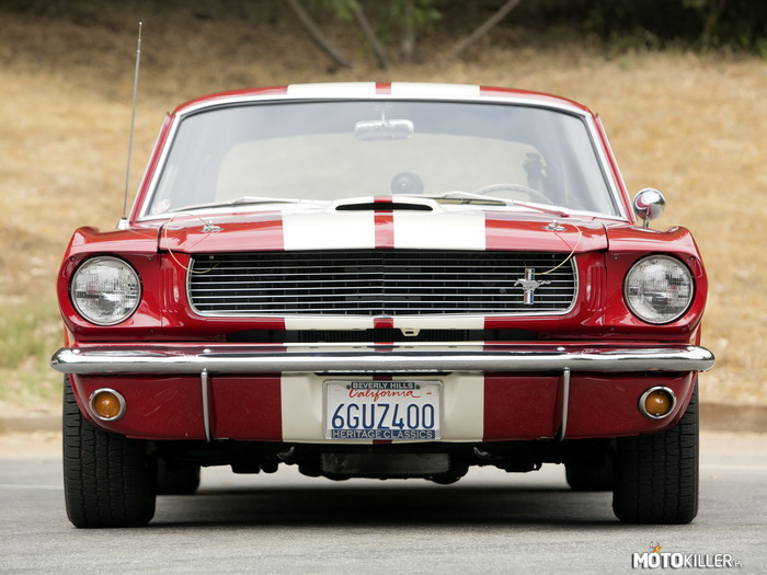 1966 Shelby GT350 –