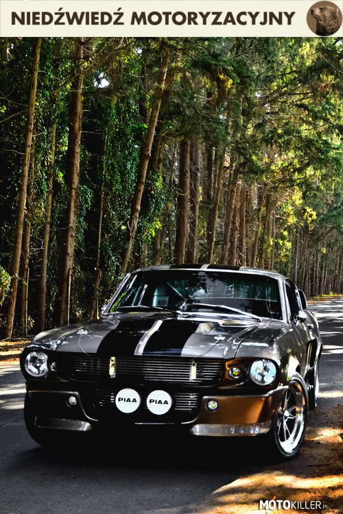 Ford Mustang Eleanor –