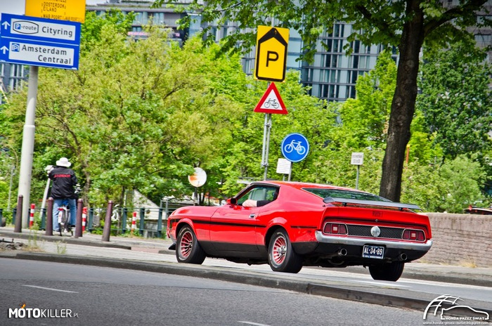 Ford Mustang Mach1 – Spotkany w Amsterdamie.