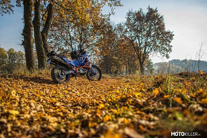 Jesiennie KTM 990 Adventure –