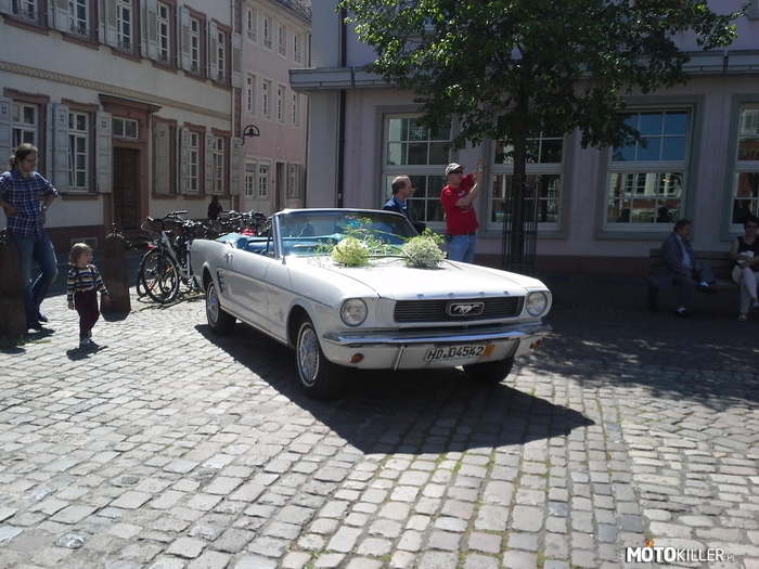 Ford Mustang – Auto weselne w Niemczech