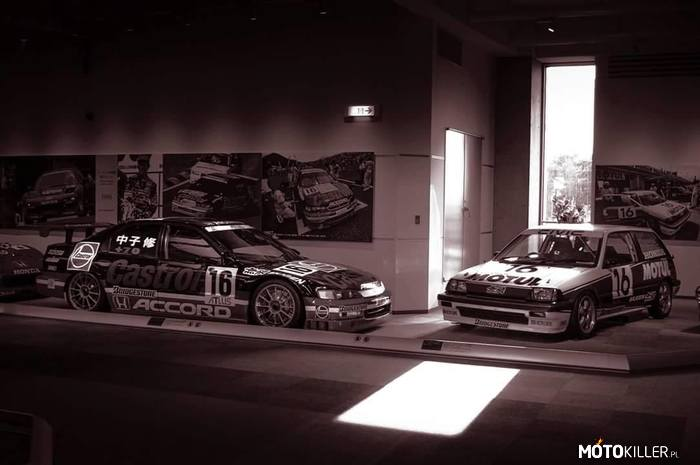 Honda Collection Hall – Castrol Accord CD6 i Mugen Motul E-At w muzeum Hondy.