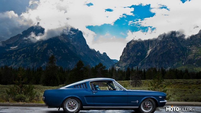 Ford Mustang GT Fastback 1966 –