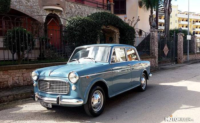 Fiat 1100 Special –