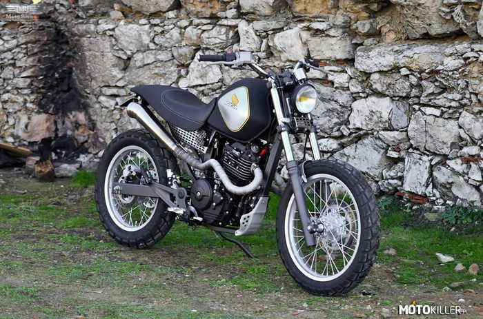 Honda Vigor Custom –
