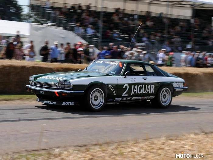 Jaguar XJS TWR Group A –