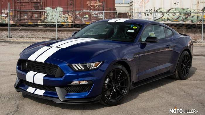 Shelby GT350 50th Anniversary –