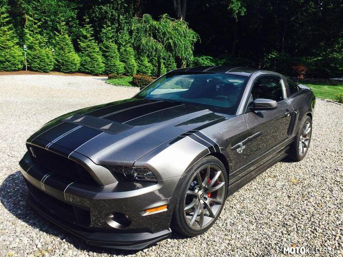 Ford Mustang SVT Gt500 –