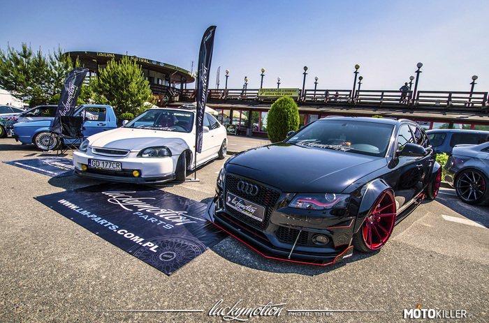 Audi A4 B8 Luckymotion –