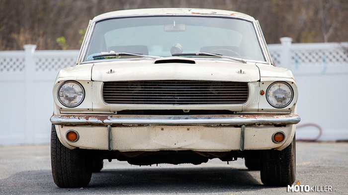Shelby Mustang GT350 – 1965 Shelby Mustang GT350