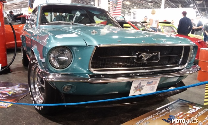 Mustang Fastback –
