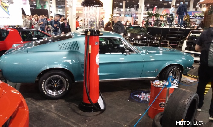 Fastback Mustang –