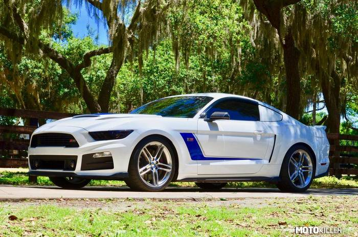 Ford Roush Mustang –