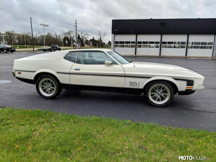 Ford Mustang Mach 1 –