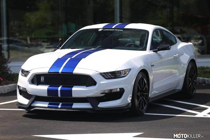 Ford Mustang Shelby GT350 –