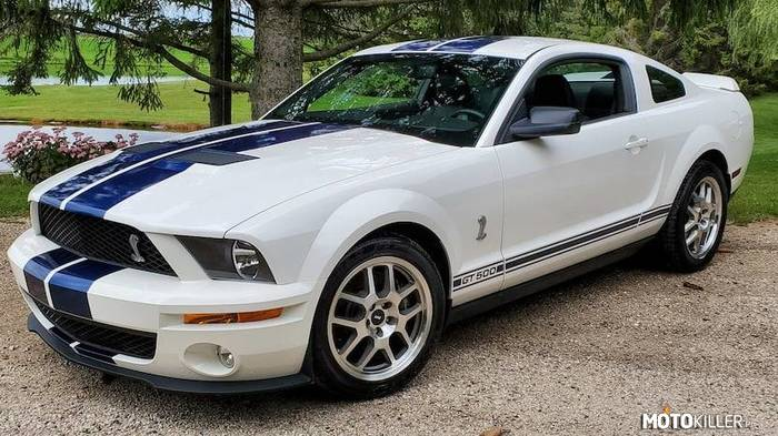Ford Shelby Mustang –