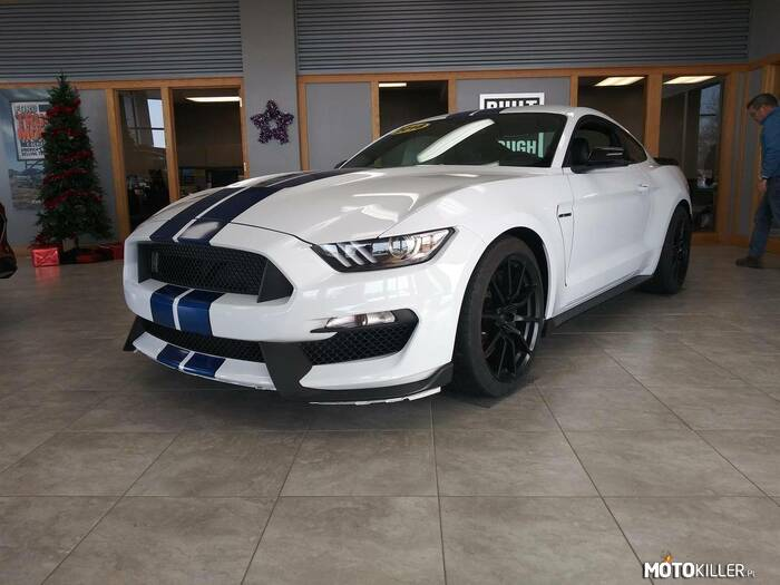 Ford Shelby Mustang GT350 –